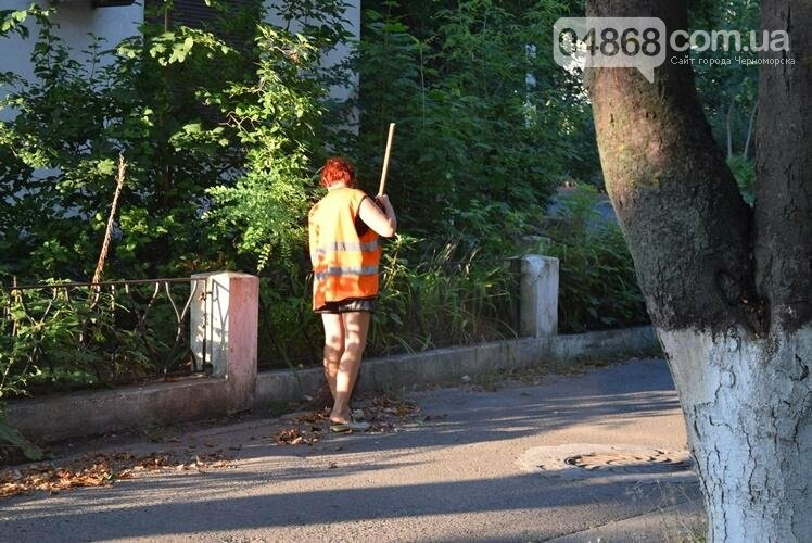 Утро на Корабельной как пример отношения жителей Черноморска к своему городу (фото), фото-15