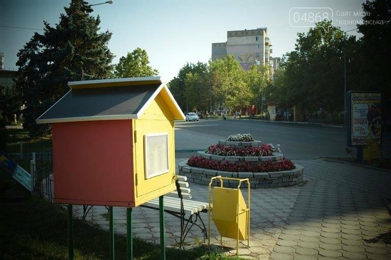 Уличные мини-библиотечки Черноморска: минус одна, фото-2