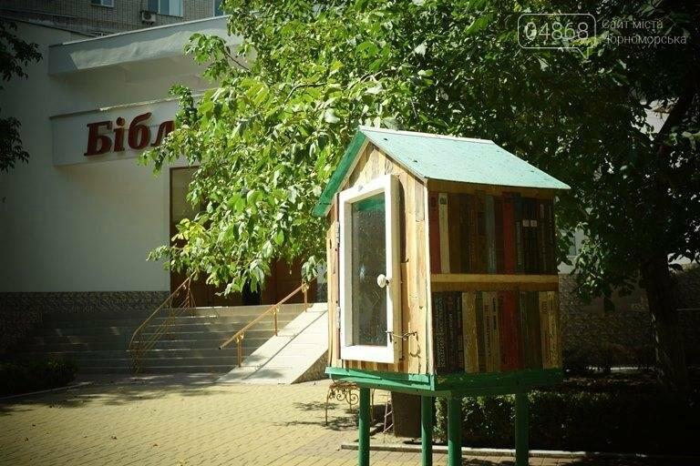 Уличные мини-библиотечки Черноморска: минус одна, фото-4