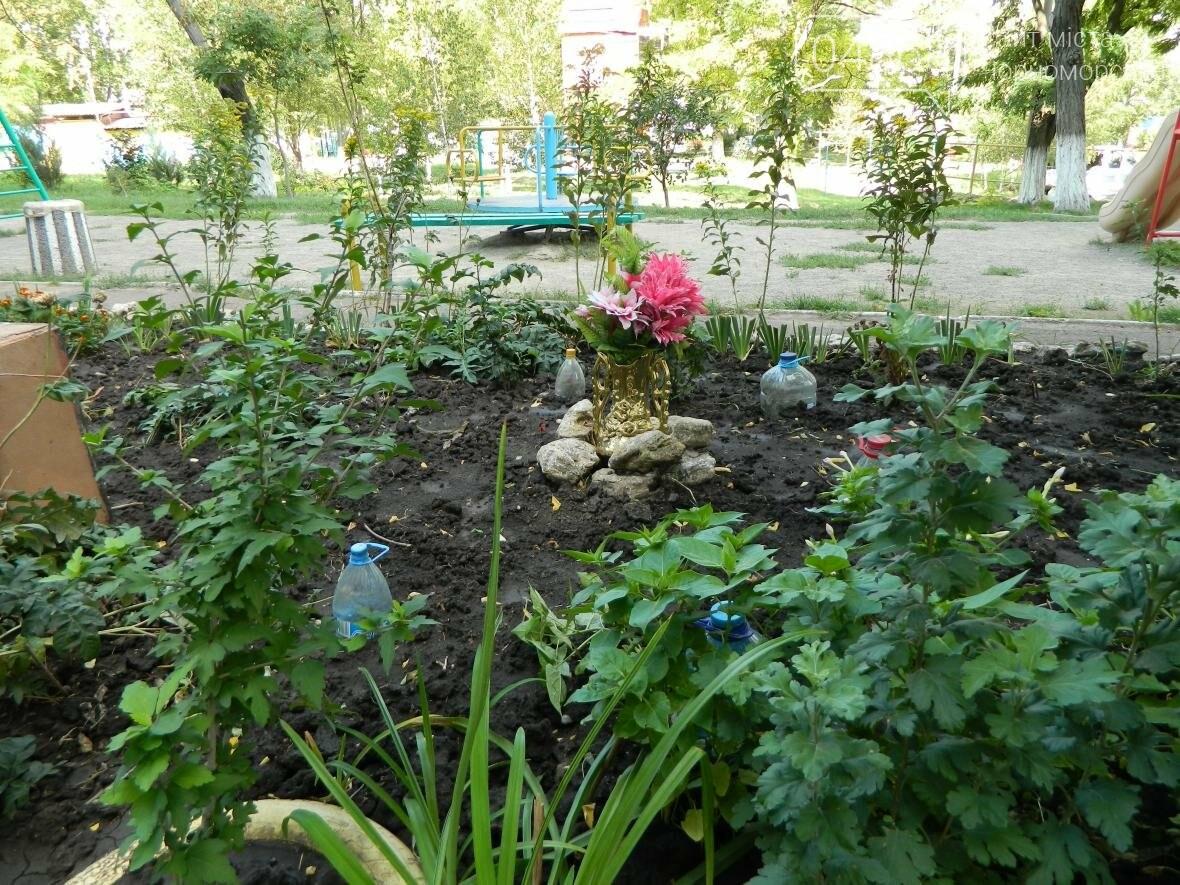 Стали известны победители конкурса на наиболее благоустроенный двор в Черноморске (фото), фото-8