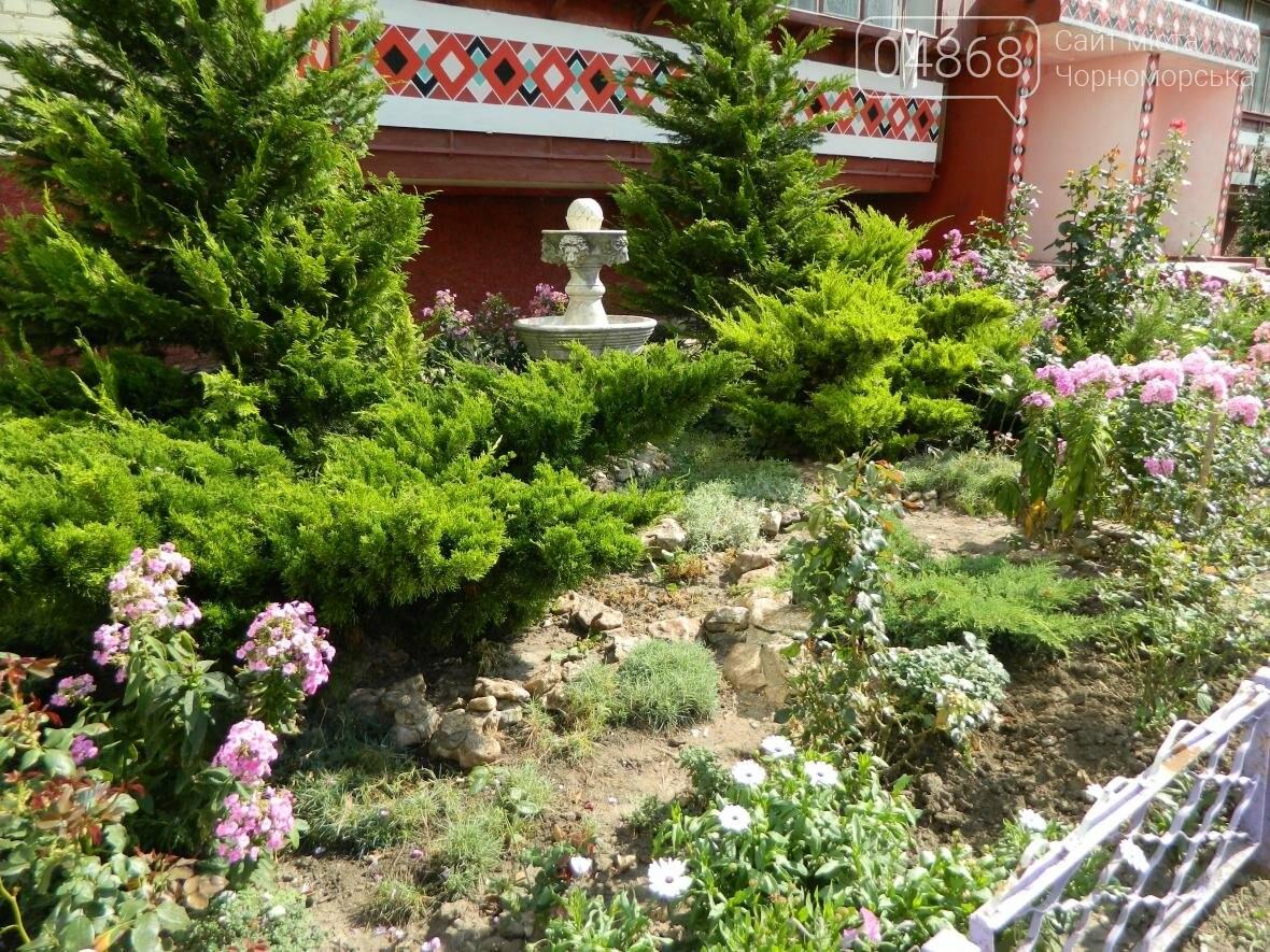 Стали известны победители конкурса на наиболее благоустроенный двор в Черноморске (фото), фото-5
