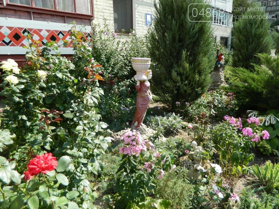 Стали известны победители конкурса на наиболее благоустроенный двор в Черноморске (фото), фото-3