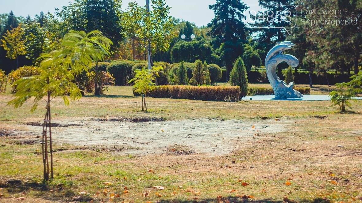 Предприятия Черноморска готовят Приморский парк ко Дню цветов (фото), фото-4