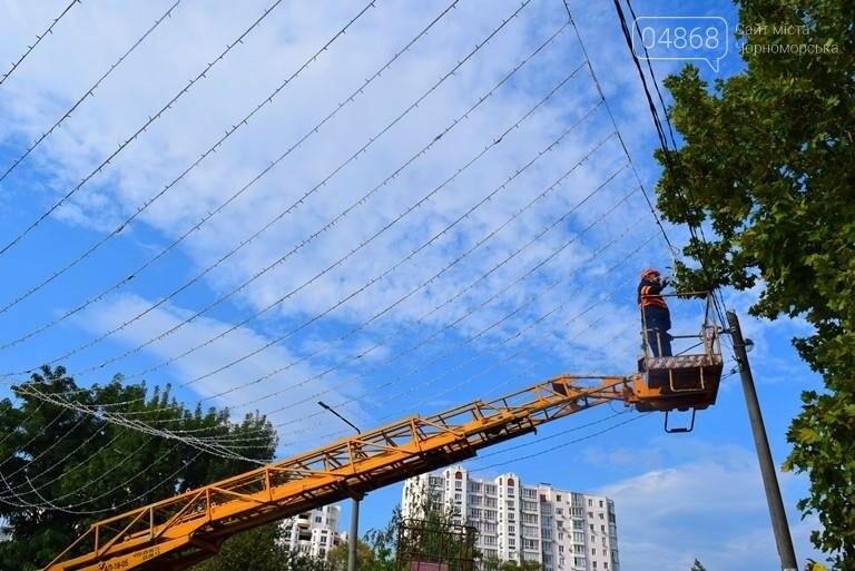 «Звёздное небо» вернулось в Приморский парк Черноморска, фото-2