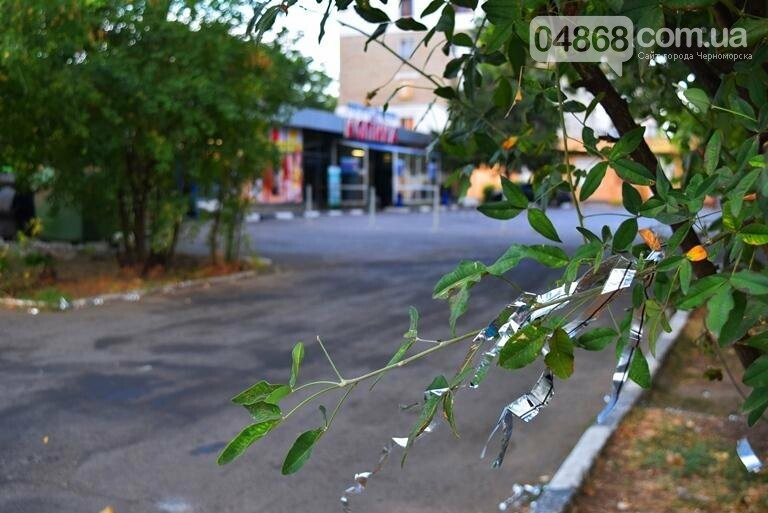 Черноморск: утро после праздника (фото), фото-12