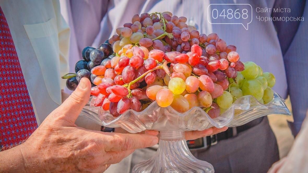 Как прошёл День цветов и даров природы в Черноморске (фото), фото-12