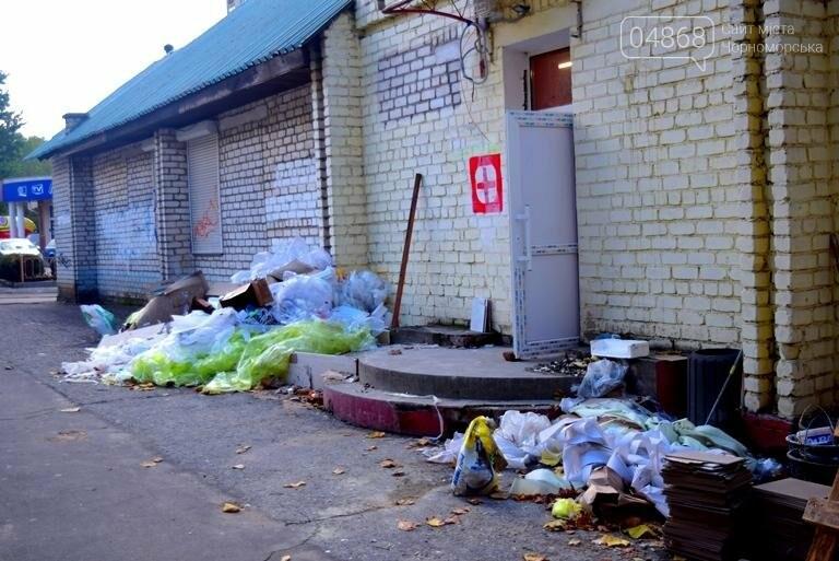 Неравнодушие жителей Черноморска в социальных сетях не осталось незамеченным, фото-2
