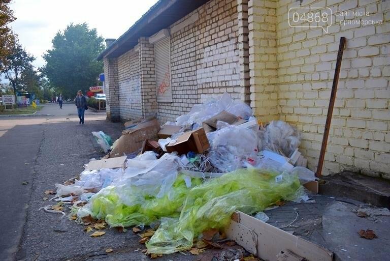 Неравнодушие жителей Черноморска в социальных сетях не осталось незамеченным, фото-5