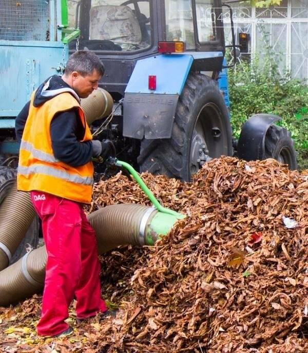 Осенний листопад: коммунальщики Черноморска рассказали о том, как поддерживается чистота города (фото), фото-3