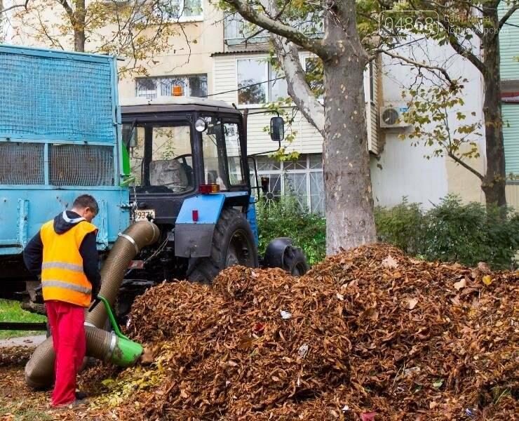 Осенний листопад: коммунальщики Черноморска рассказали о том, как поддерживается чистота города (фото), фото-4