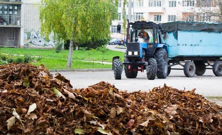 Осенний листопад: коммунальщики Черноморска рассказали о том, как поддерживается чистота города (фото), фото-1