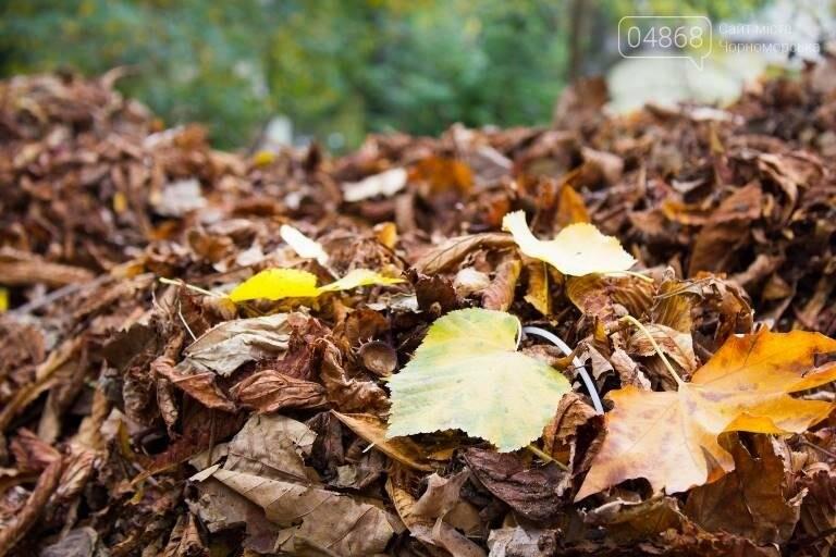 Осенний листопад: коммунальщики Черноморска рассказали о том, как поддерживается чистота города (фото), фото-5