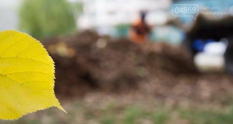 Осенний листопад: коммунальщики Черноморска рассказали о том, как поддерживается чистота города (фото), фото-10