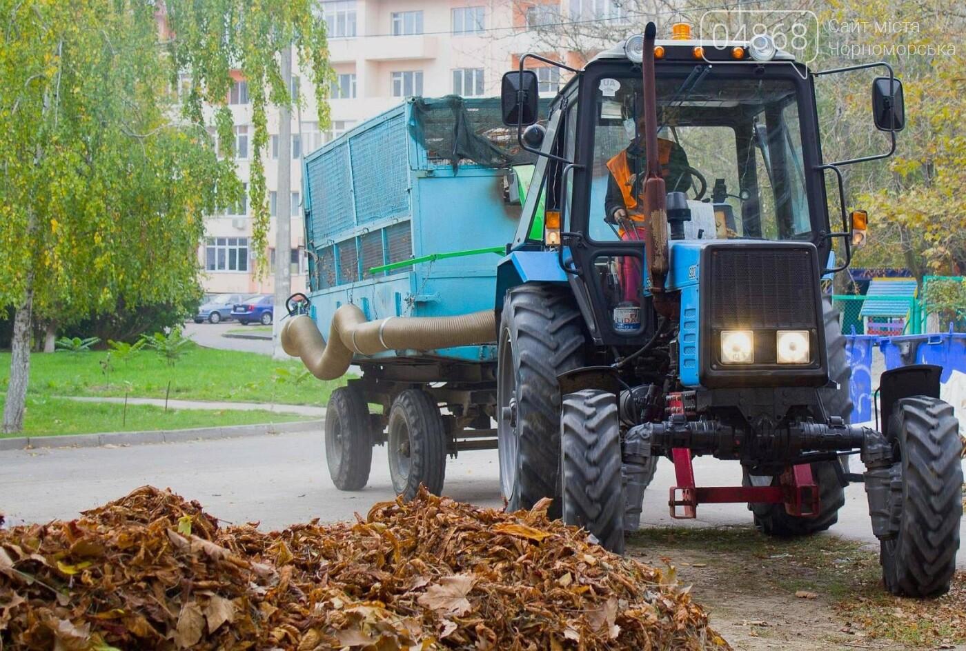 В субботнике приняли участие свыше 500 жителей Черноморска, фото-10