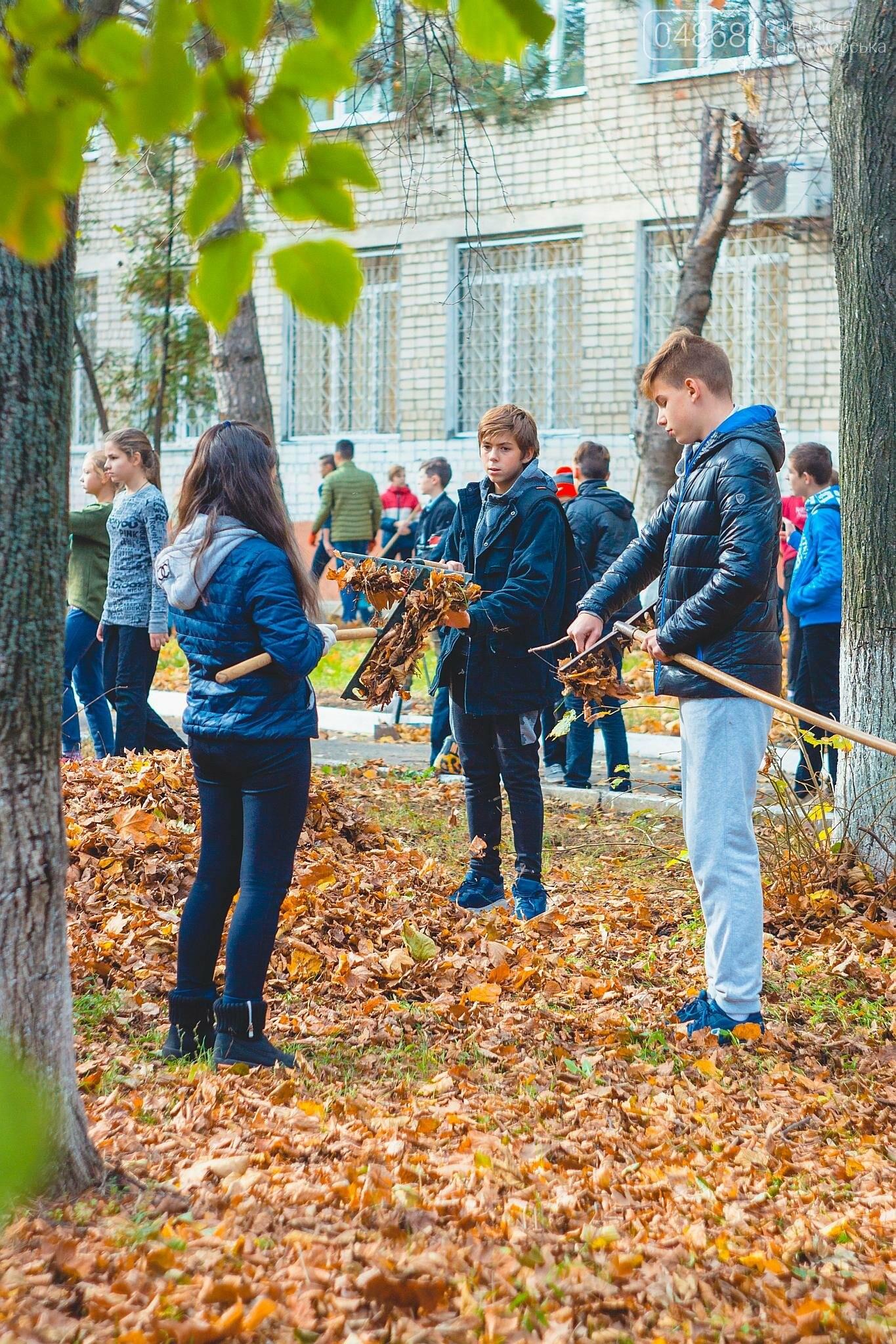 В субботнике приняли участие свыше 500 жителей Черноморска, фото-5