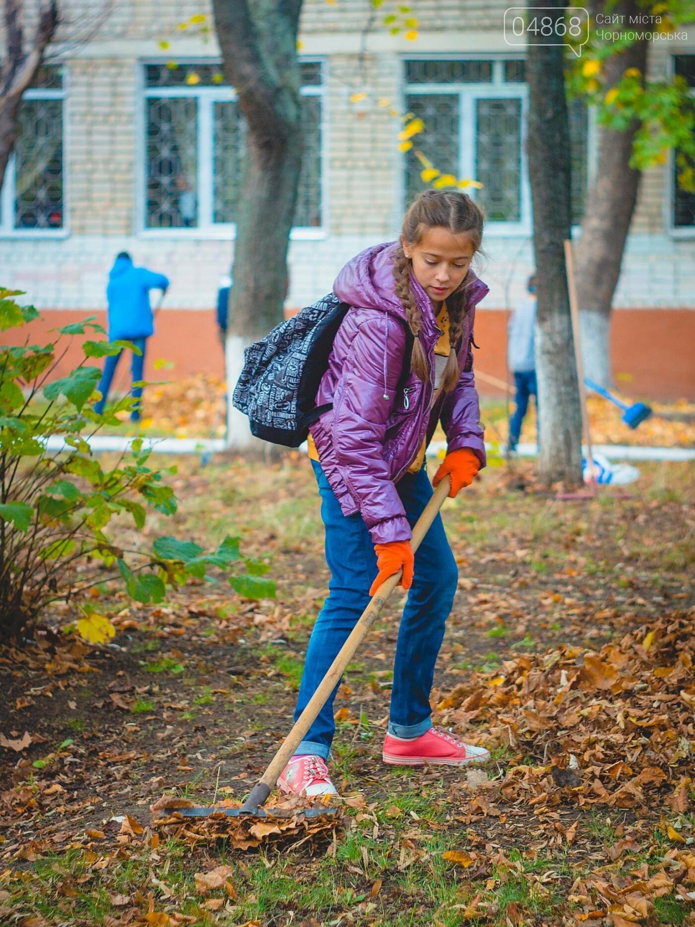 В субботнике приняли участие свыше 500 жителей Черноморска, фото-7