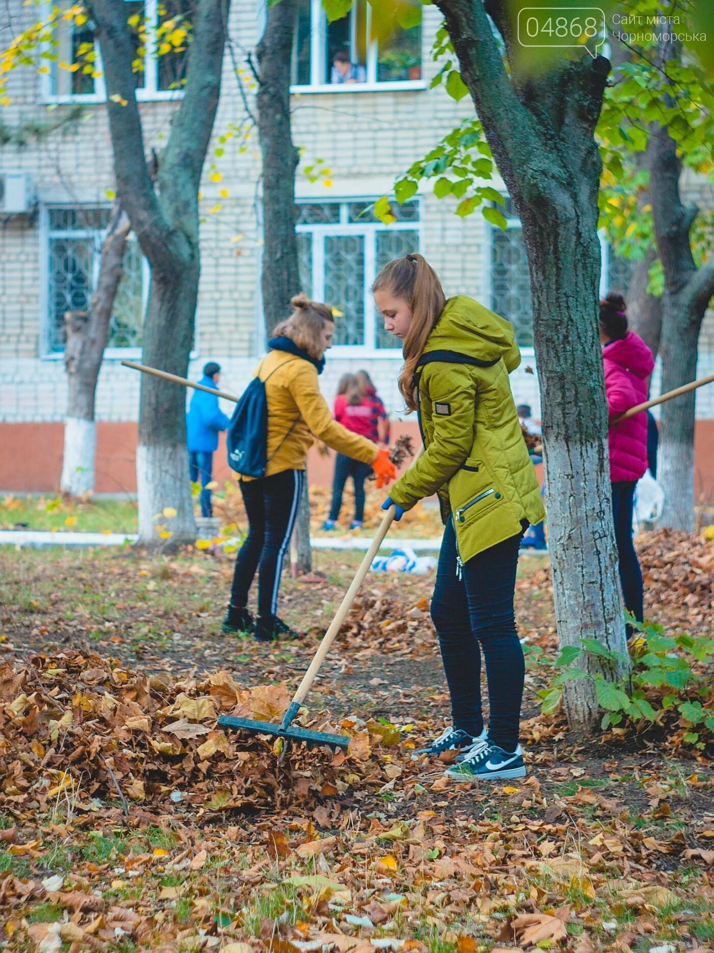 В субботнике приняли участие свыше 500 жителей Черноморска, фото-6