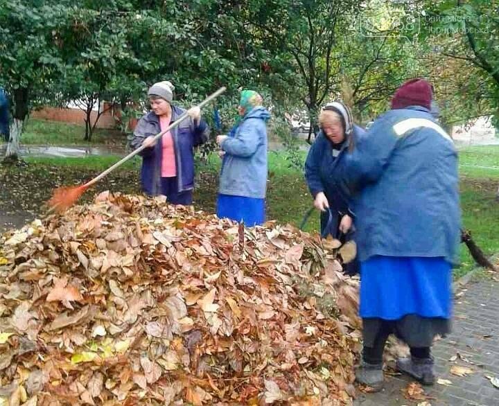 В субботнике приняли участие свыше 500 жителей Черноморска, фото-1