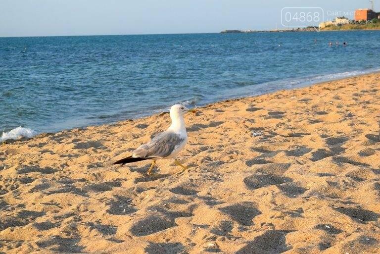 Международный День Черного моря, фото-2