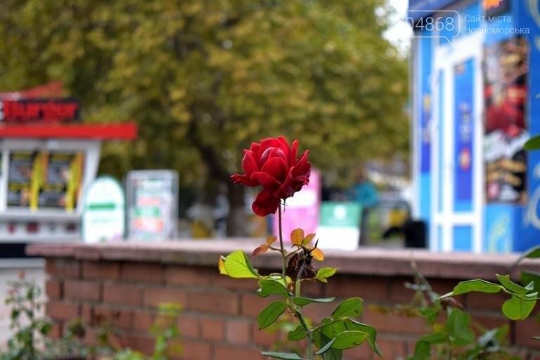 Ноябрь в Черноморске: прогноз погоды, фото-5