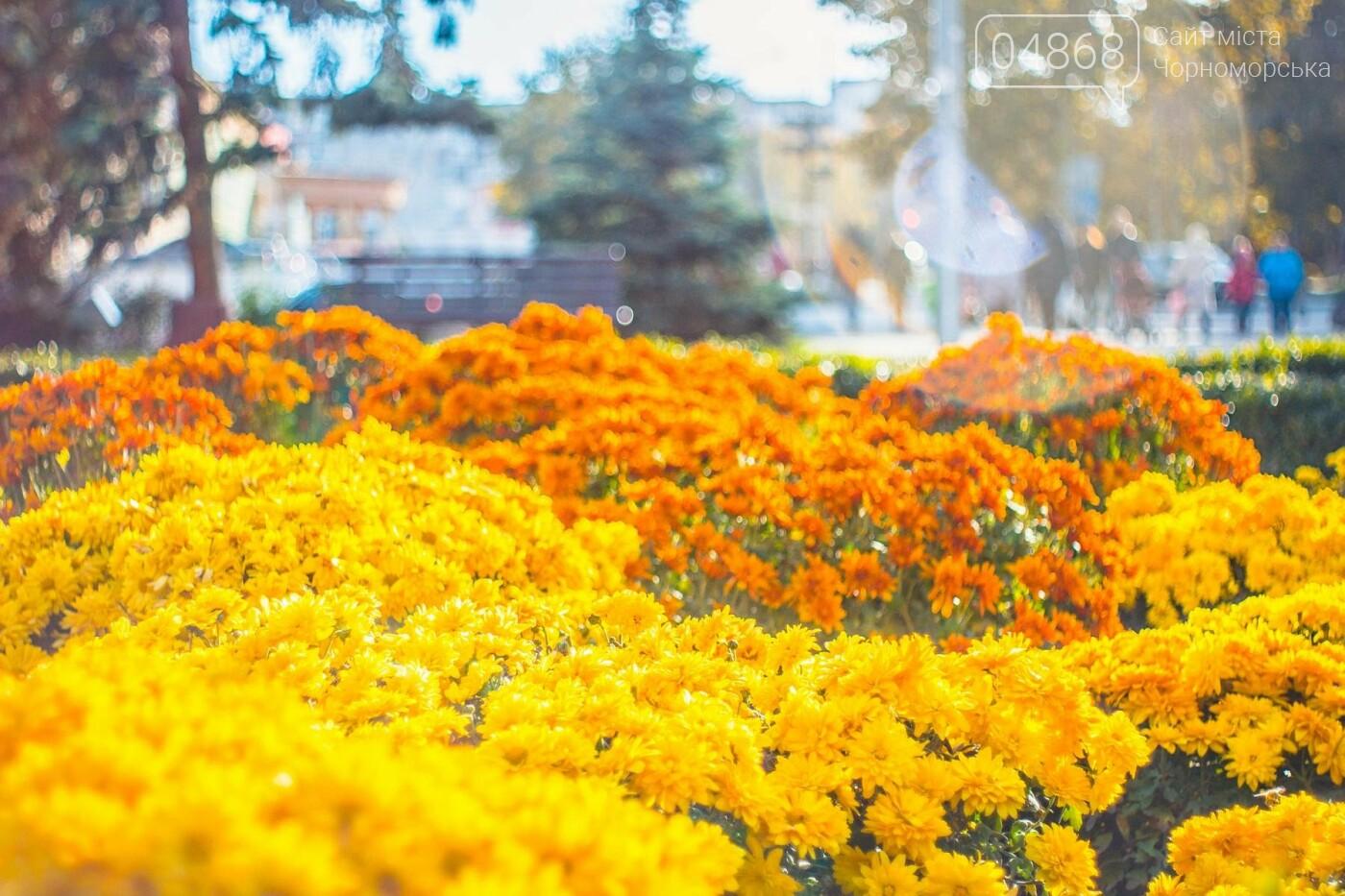 В Черноморске высажено около 1000 новых растений, фото-8