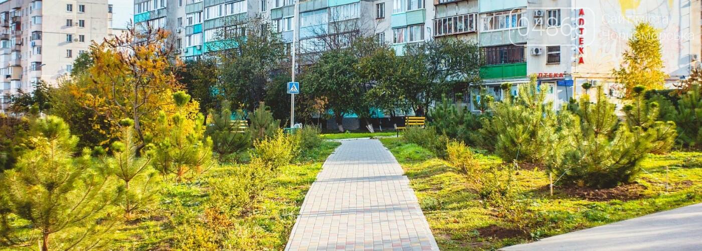 В Черноморске высажено около 1000 новых растений, фото-9