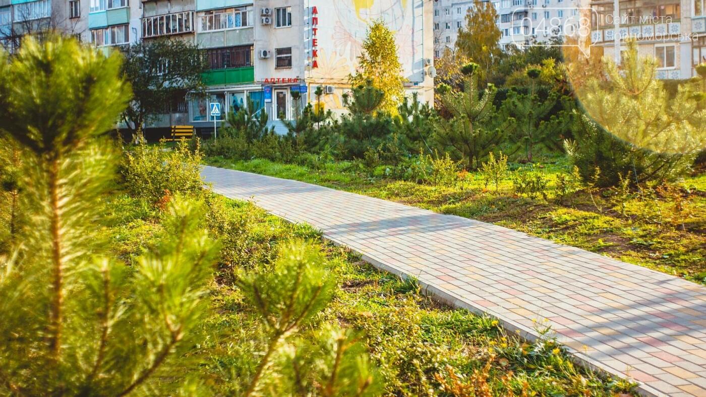В Черноморске высажено около 1000 новых растений, фото-4