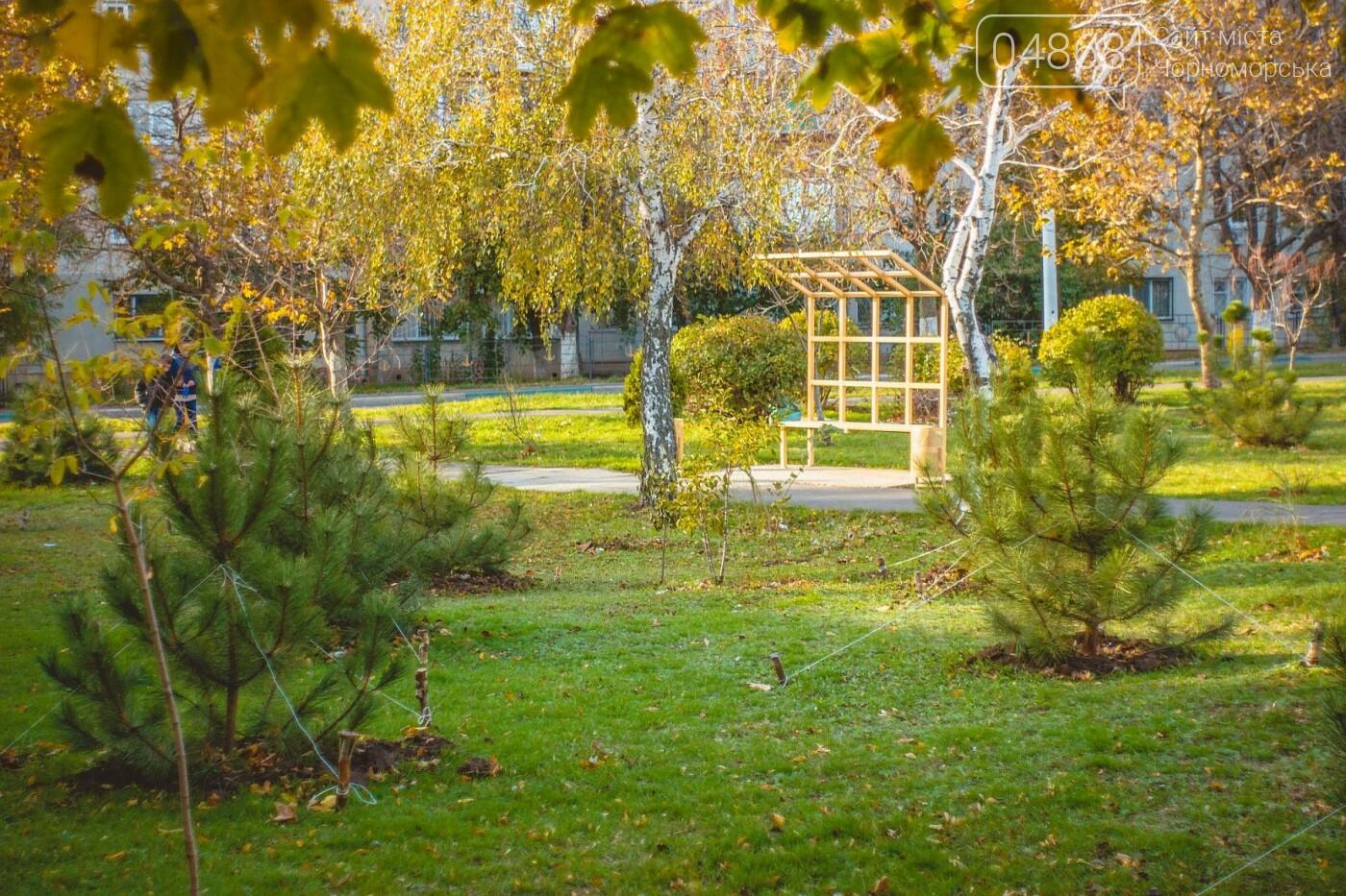 В Черноморске высажено около 1000 новых растений, фото-2