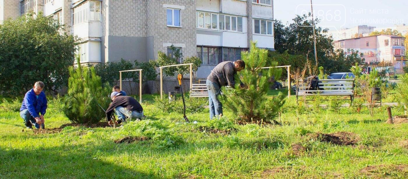 В Черноморске высажено около 1000 новых растений, фото-7