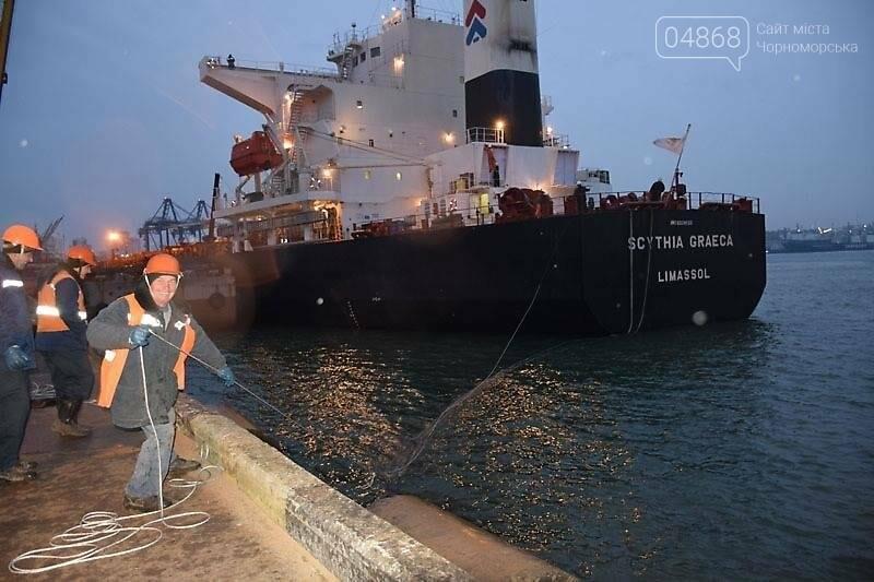 В Черноморском порту завершили выгрузку угля из ЮАР, фото-3