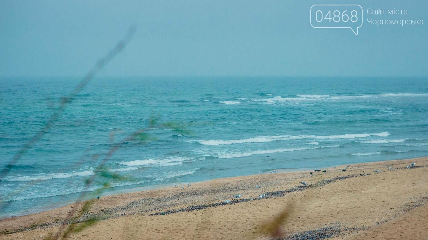 Продолжаются работы по благоустройству прибрежной территории Черноморска, фото-10