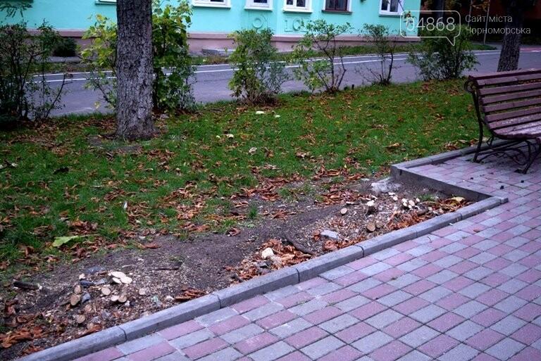 Весной одна из самых красивых аллей Черноморска получит новый зелёный наряд, фото-6