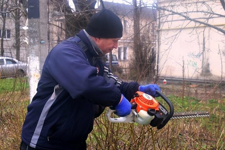 ГУЖКХ Черноморска приводит в порядок дворы города, фото-5