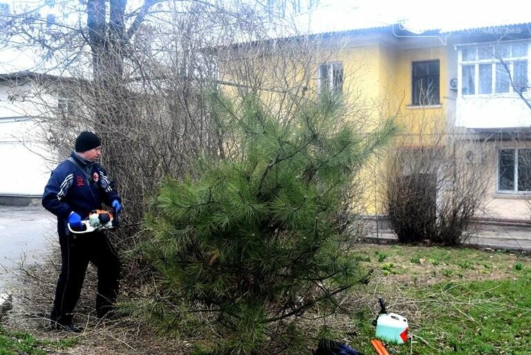 ГУЖКХ Черноморска приводит в порядок дворы города, фото-4