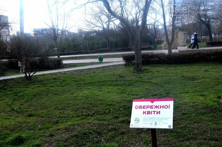 Проект «ЕсоТерапия»: Черноморск наполняют первоцветы, фото-7