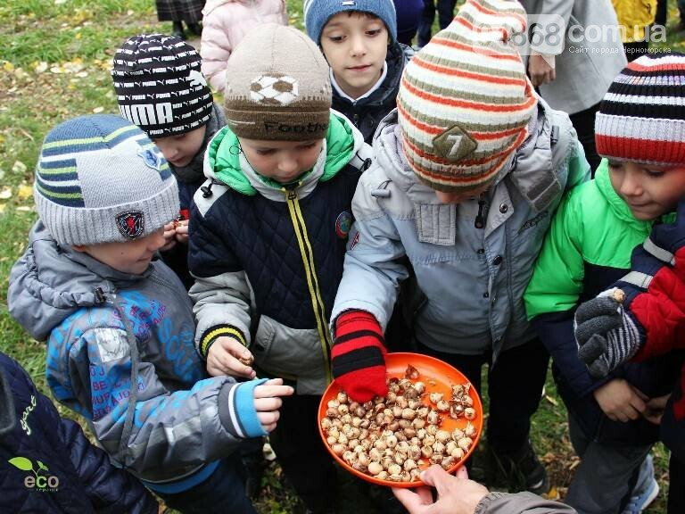Проект «ЕсоТерапия»: Черноморск наполняют первоцветы, фото-11