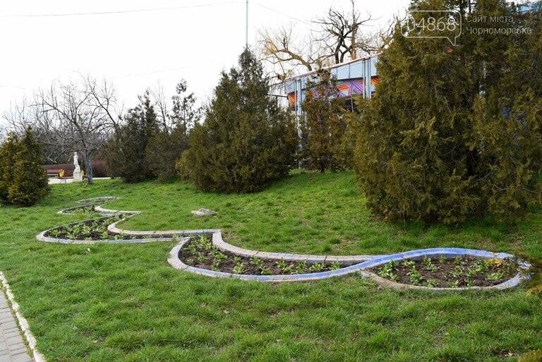 Весне дорогу: первые цветы заполнили клумбы Черноморска, фото-3