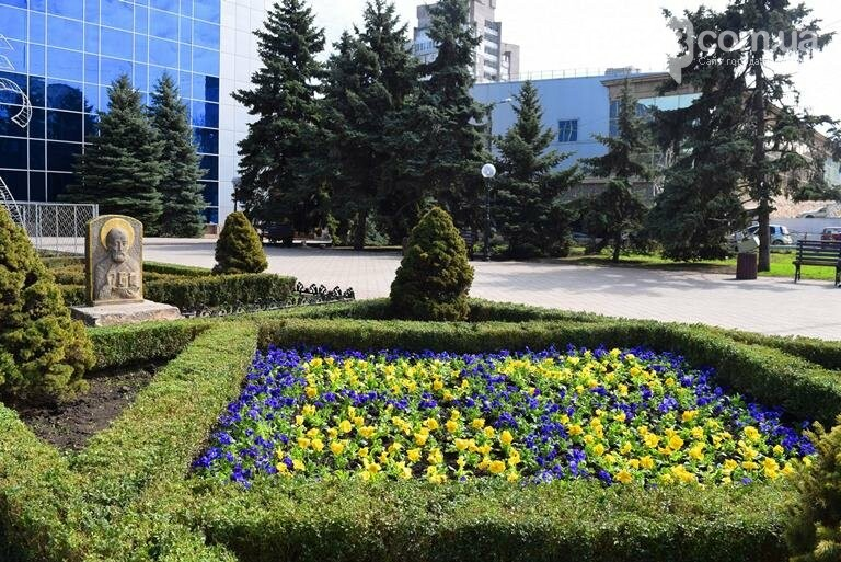 Весне дорогу: первые цветы заполнили клумбы Черноморска, фото-9