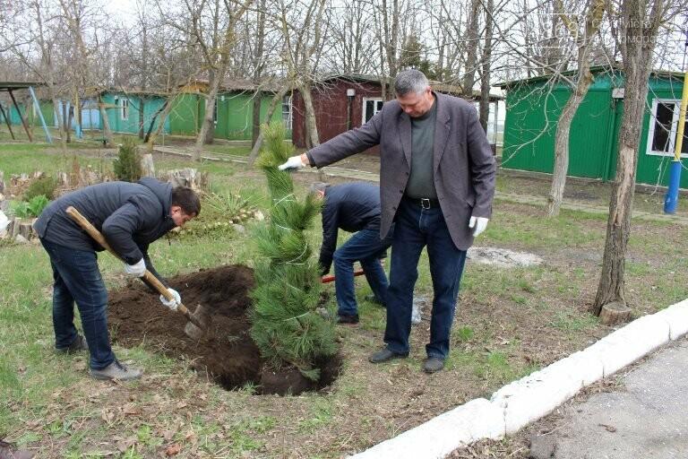 «Город-сад»: в Черноморске стартовала «зелёная инициатива», фото-6