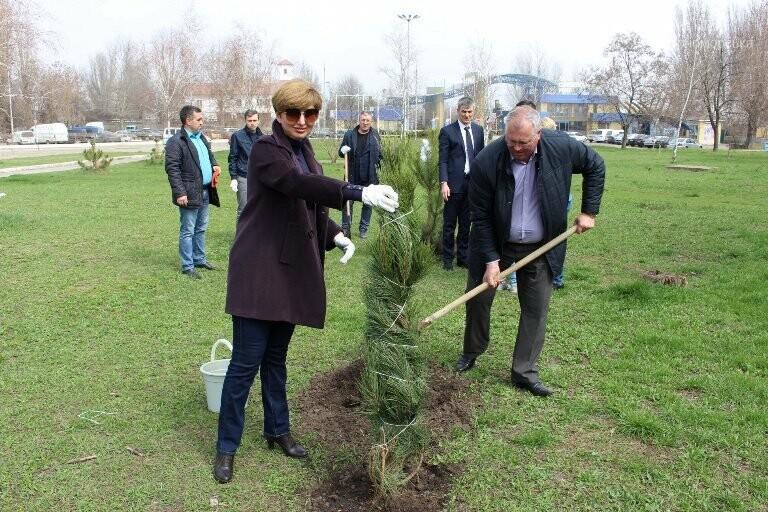 «Город-сад»: в Черноморске стартовала «зелёная инициатива», фото-5