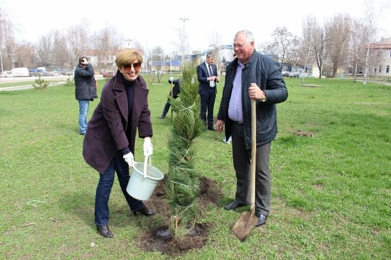 «Город-сад»: в Черноморске стартовала «зелёная инициатива», фото-1
