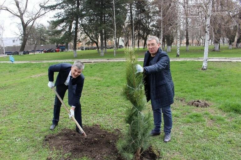 «Город-сад»: в Черноморске стартовала «зелёная инициатива», фото-7