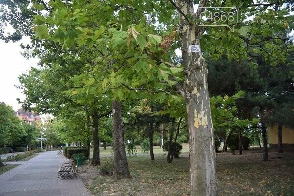 «Ломать – не строить»: вандализм в Черноморске, фото-5