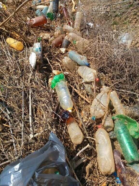 «Экотерапия моря и души»: ребята из черноморской школы № 1 провели акцию по очистке побережья от мусора, фото-8