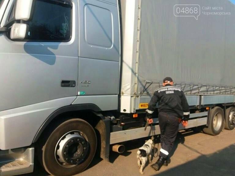 В порту «Черноморск» пограничники задержали угнанный в Литве грузовик, фото-3
