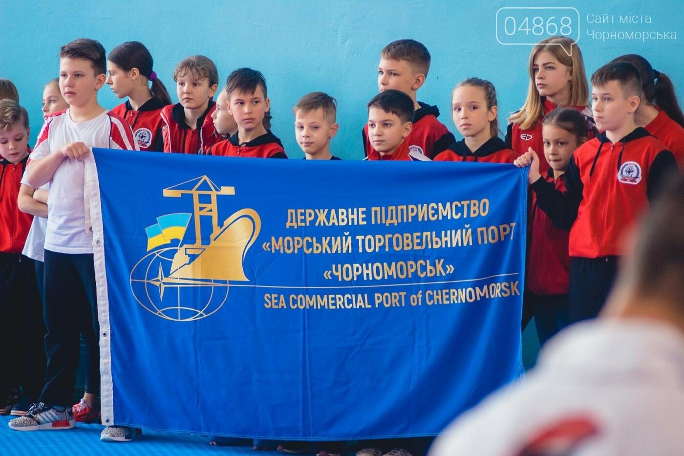 В Черноморске прошел Международный турнир по карате, фото-18
