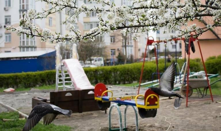 Самый правильный флешмоб: на выходных в Черноморске пройдёт два субботника, фото-3