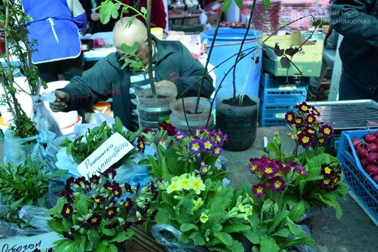 Как сделать двор у дома красивым: мониторинг весенних цен на цветы в Черноморске, фото-8