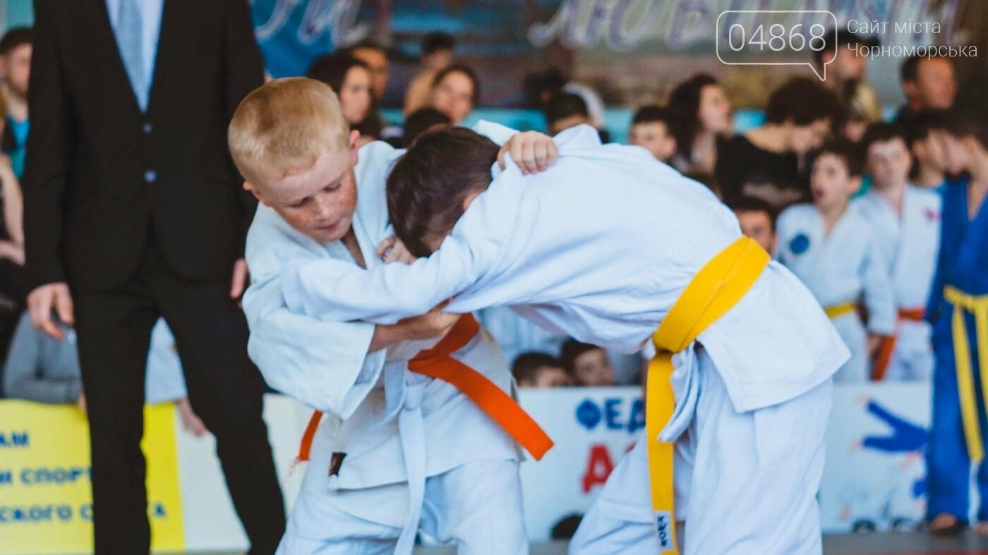 В Черноморске прошел турнир по дзюдо на Кубок мэра, фото-6