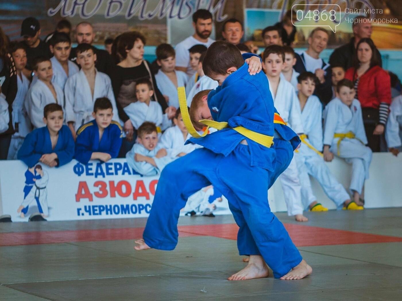 В Черноморске прошел турнир по дзюдо на Кубок мэра, фото-18